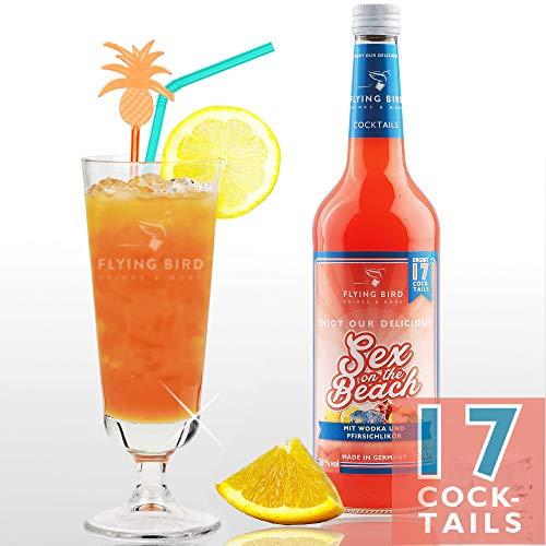 Sex On The Beach 28% Vol. | Premix für 17 fertige Cocktails mit Alkohol | Flasche 0,7 l mit allen Zutaten | Einfach mit Orangensaft mixen