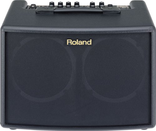 Roland AC-60 Acoustic Chorus Guitar Amplifier with Dual 30-Watt 6.5-inch Speakers, Black