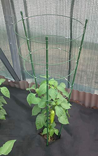 maxpack® Rankhilfe Gartenpflanze Gurkenturm Stützringe für Topfpflanzen Kletterpflanze Tomaten Gurke Pflanze Käfig Spalier robust (H: 60 cm)