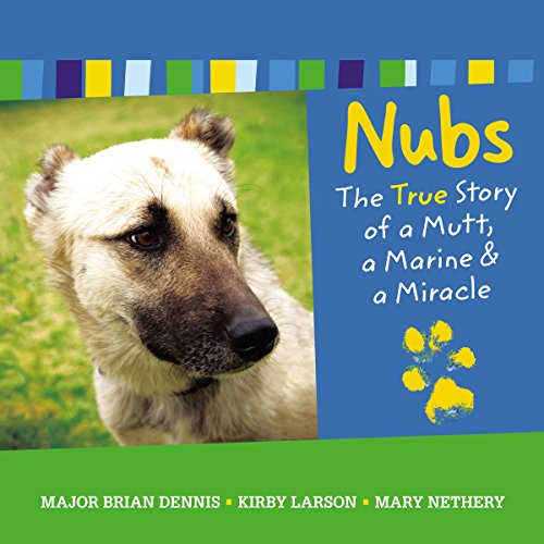 Nubs audiobook cover art