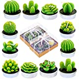 12 Pieces Cactus Tealight Candles Handmade Delicate Succulent Cactus Candles for Party Wedding Spa Home Decoration Gifts