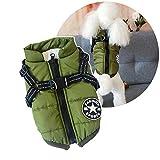 Pettorina invernale per cani, calda giacca per cani di piccola taglia, protegge dal freddo