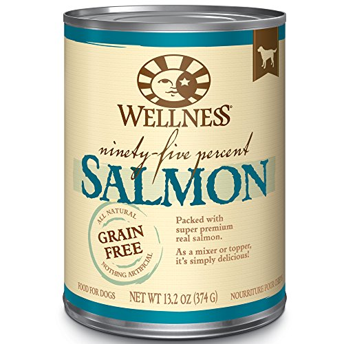 Wellness 95% Salmon Grain-Free Canned Dog Food, 13.2 Ounces, Pack of 12