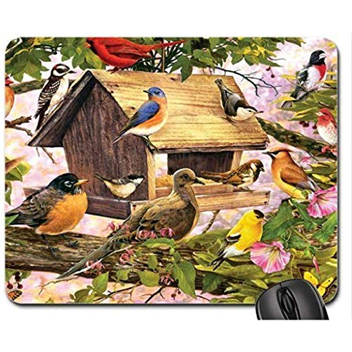 Songbirds at The Birdfeeder F1 Mouse Pad, Mousepad (Birds Mouse Pad)