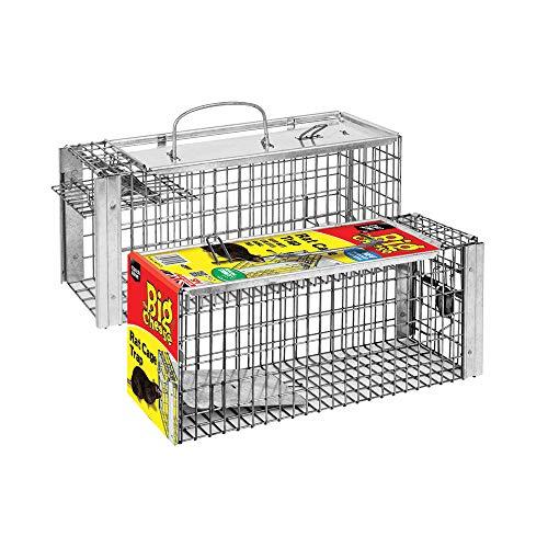 Le piège de cage de rat de grand fromage (grand, humain, piège de capture-vivant, utilisation à l'intérieur et à l'extérieur dans les jardins)