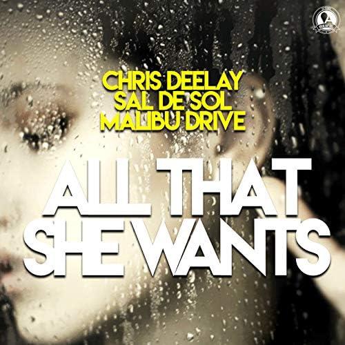 Chris Deelay, Sal De Sol & Malibu Drive