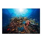 Bilderwelten Fotomural Premium - Laguna Submarino - Mural apaisado papel pintado fotomurales murales pared papel para pared foto 3D mural pared barato decorativo, Tamaño: 190cm x 288cm