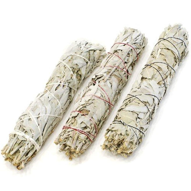 ディプロマ魅力的であることへのアピールカテゴリーホワイトセージ ビッグワンドタイプ 約75-100g 浄化用