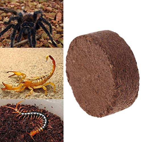 Pet Bed , Haven Shop 10 Block Kokosnussstreu für Reptilien, Reptilien Kokosfasersubstrat Ziegel Natürliche Bettwäsche Boden für Terrarien, Kokosnussfaser, Kokosnuss gemahlen, Humus Torf frei langl