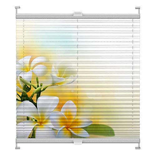 Plissee mit Motiv 1006 nach Maß Schrauben in Glasleisten Klemmen auf Fensterrahmen Digitaldruck Sichtschutz lichtdurchlässig fest verspanntes Jalousie Rollo Fenster innen Breite 51-74 Höhe 175-199 cm
