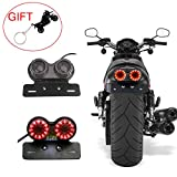 CHUDAN 12V LED Rücklicht Generic Durable Motorrad Light Blinkerbremse Dual Light Twin Light...