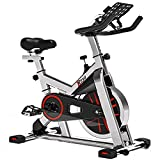 TRYA Spin Bike, Belt Drive Indoor Cycling Bike Stationary with Ipad Mount, 35 LBS Flywheel Workout Bike for Home Cardio Gym, with LCD Monitor & Comfortable Seat Cushion(Gray)