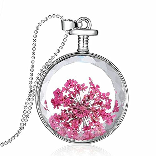 Daesar Mujer Collar Flores Secas Rosa Collar Vidrio Botella de Deseos Colgante Collar 60cm