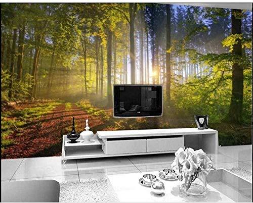 ZJfong 3D Fotobehang, muurprint, decoratieve muurdecoratie voor woonkamer, slaapkamer, kunst, muurpapier, Global Sky 330 x 210 cm.