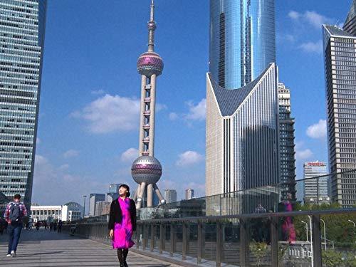 中国#1 タイムスリップを楽しむ上海♪未来都市から明・清時代まで満喫!