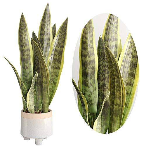 Planta Verde Artificial Flor de simulación de Planta de Desierto Sansevieria de 4 Hojas para Tienda de Oficina en casa Decoración de jardín