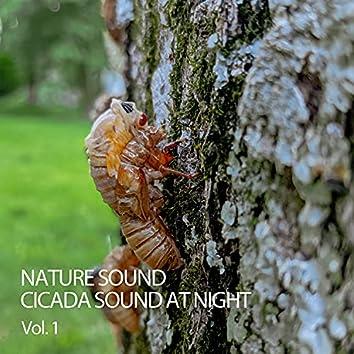 Nature Sound: Cicada Sound At Night Vol. 1