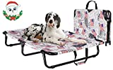 AOY Elevated Dog Bed Raised Dog Bed | Premium Tear Resistant Mesh | Portable & Foldable Design | Replaceable Cot | Indoor & Outdoor | No Assembly Required (Large)