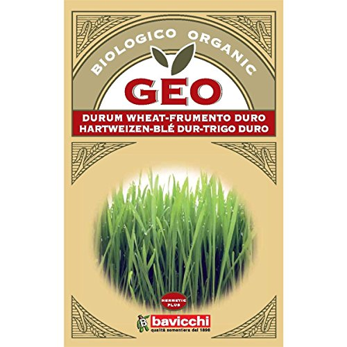 Geo Graine à Germer Blè Dur Brun 12,7 x 0,7 x 20 cm