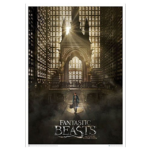 Fantastic Beasts and Where to Find Them Magical Congress Art Print Affiche