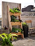 Planter-Ladder Planter with up to six Boxes,Ladder Planter, Garden Box, Flower Ladder Box, Garden Ladder Box, Vertical Tiered Planter 976951062