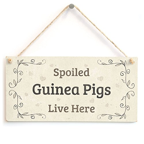 Meijiafei Spoiled Guinea Pigs Live Here - Gift Sign for Guinea Pig Owners 10'x5'