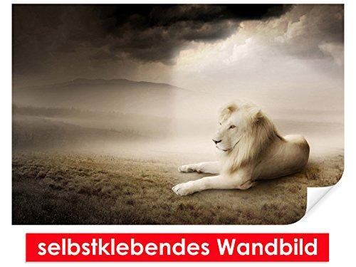 Image murale auto-adhésif White Lion – Facile à coller – Wall Print, Wall Paper, Poster, film vinyle avec point décoratif pour murs, portes, meubles et toutes les surfaces lisses de Trend murs, 90 x 60 cm