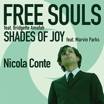Free Souls / Shades of Joy