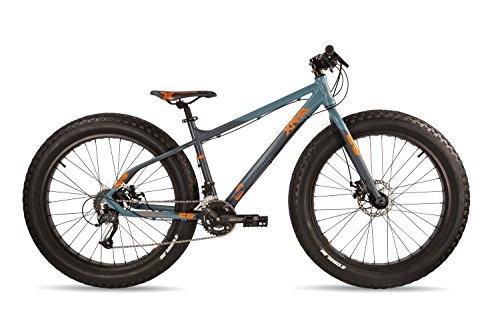 S.Cool XT Fat 26-18 Bicicleta Juvenil, Infantil, Gris, Gris