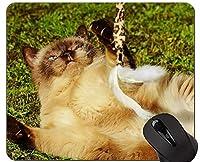 マウスパッド、アメリカンショートヘアゲーミングマウスパッドカスタム、ステッチエッジ付きの猫マウスパッド