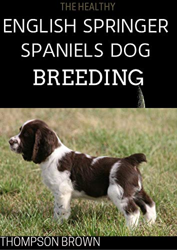 THE HEALTHY ENGLISH SPRINGER SPANIELS DOG BREEDING : Training, Nutrition, Recall, Hunting, Grooming, Health Care and more For English Springer dog (English Edition)