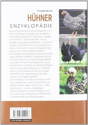 Illustrierte Hühner-Enzyklopädie - 2
