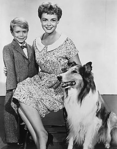 LASSIE JON PROVOST JUNE LOCKHART 8X10 PHOTO #D8458