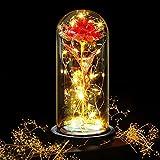 Punvot Rosa Eterna Roja Flor Eterna Rosa Encantada Regalo para Mujeres Galaxy Rose Flower in Glass Domo luz LEd para su...