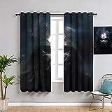 Sdustin Cortinas de salón de Star-Wars 253 x 243 cm, cortinas personalizadas The Force Awakens, cortinas opacas anchas, cortinas opacas para mantener el calor, 1 par