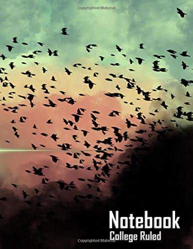 """Notebook - Birds in The Clouds (College Ruled, Matte Softcover, 196 White Lined Pages, 8.5"""" x 11"""" (21.59 x 27.94 cm))"""