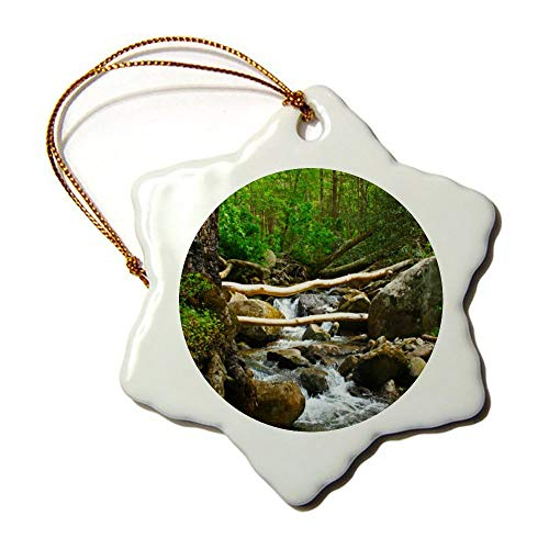 Christmas Ornaments, Gatlinburg Tennessee Porcelain Snowflake Ornament Tree Hanging Decor Gift For Families Friends,3 Inch