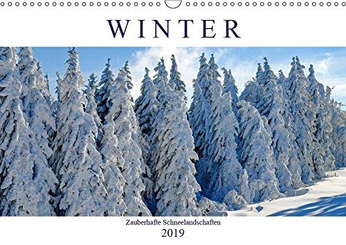 Winter. Zauberhafte Schneelandschaften (Wandkalender 2019 DIN A3 quer): Ein Spaziergang durch märchenhafte Winterlandschaften (Monatskalender, 14 Seiten ) (CALVENDO Natur)