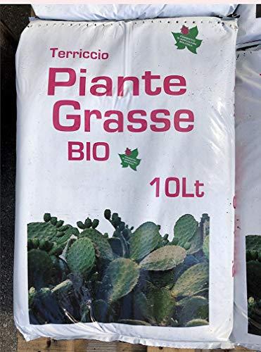 TERRICCIO per Piante GRASSE E Cactus Biologico Sacco LT 10 Consentito in Agricoltura Biologica
