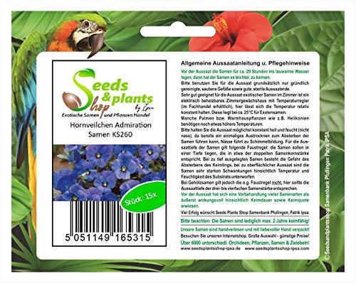 Stk - 15x Hornveilchen Admiration Blumensamen Samen Saatgut Frisch Neuheit KS260 - Seeds Plants Shop Samenbank Pfullingen Patrik Ipsa