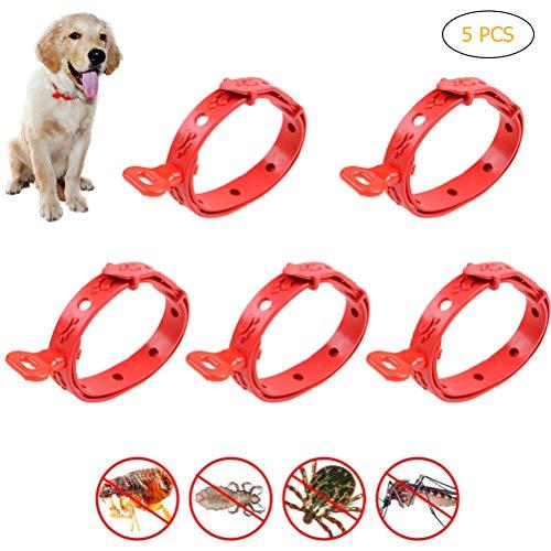 Yissma Zecken Halsband für Hunde und Katzen,5 Stück Wasserdicht Hund Flohhalsband,2 Monate Schutz - für Kleine Groß Haustiere,Natürliche & Sicherheit