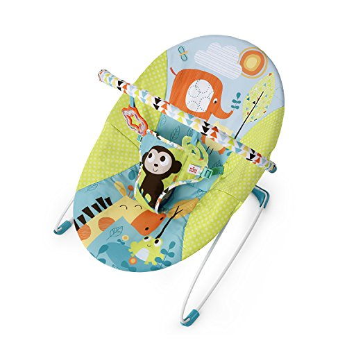 Bright Starts Motif Pals Vibrant Bouncer