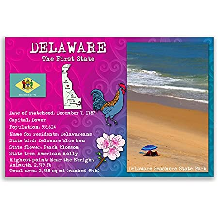 Made in USA. Post cards with ME facts and state symbols MAINE STATE FACTS postcard set of 20 identical postcards