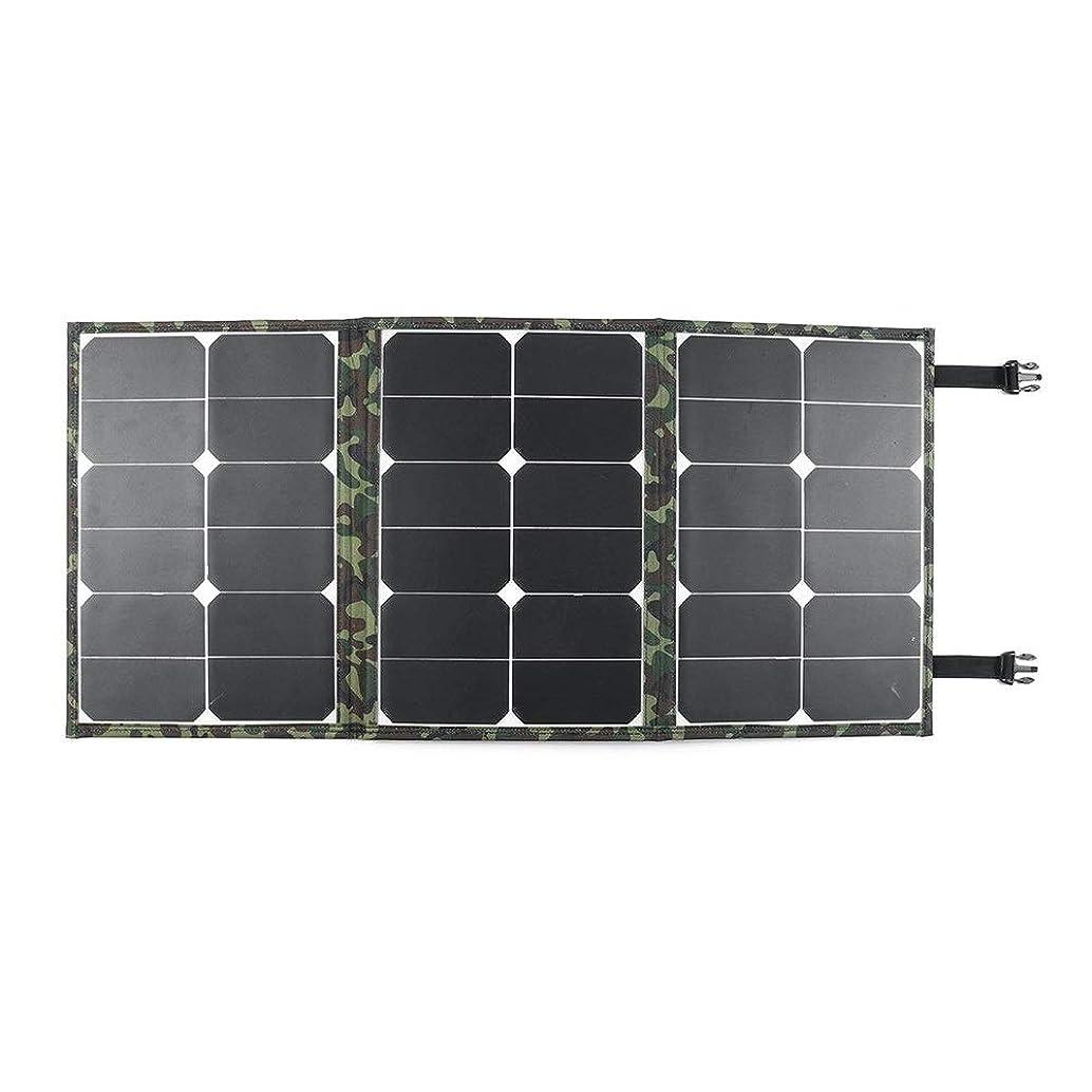 ルビー気候アスペクトソーラーパネル 90W折り畳み式のソーラーパネルデュアルUSB充電器電源銀行アウトドアキャンプハイキング ソーラーチャージャー (Color : Multi-colored, Size : 87.3x41cm)