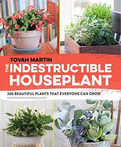 Indestructible Houseplant: 200 Beautiful Plants That Everyone Can Grow