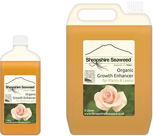 Organischer Dünger aus Atlantischen Algen hergestellt - 1 Liter - Andere Größen verfügbar