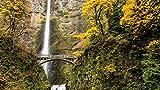 Puzzle de madera de 1000 piezas con cascada y paisaje montañoso