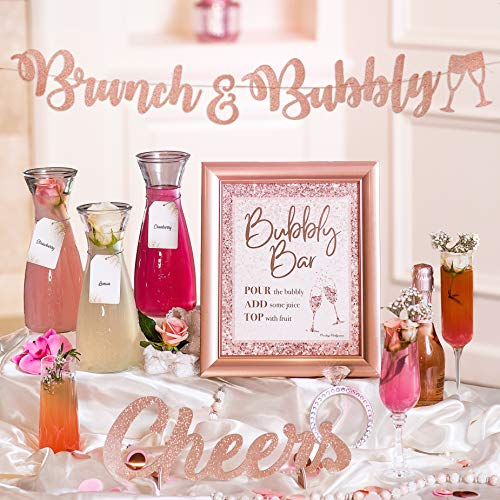 Mimosa Bar Kit   Bachelorette Party Decorations, Rose Gold Birthday Decorations, Blush Pink Bridal Shower Banner, Princess Baby Shower for Girl, Snowflakes Girl Baby Shower, Bridal Brunch Decor (Rose)