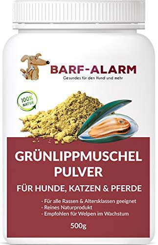 barf-alarm Grünlippmuschel Hund 100% Grünlippmuschelpulver für Hunde 500g - Grünlippmuschelextrakt Hunde Perna Canaliculus – Barf Pulver