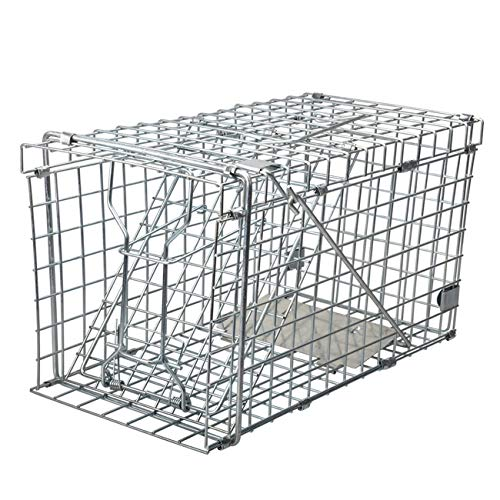 Gingbau Heavy Duty Squirrel Trap Collapsible Humane Live Squirrel Cage Trap - 14